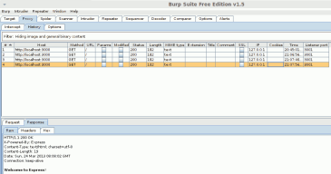 Burp Suite Proxy History